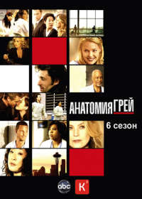 Анатомия Страсти / Grey's Anatomy Сезон 6 (3DVD-Mpeg4)